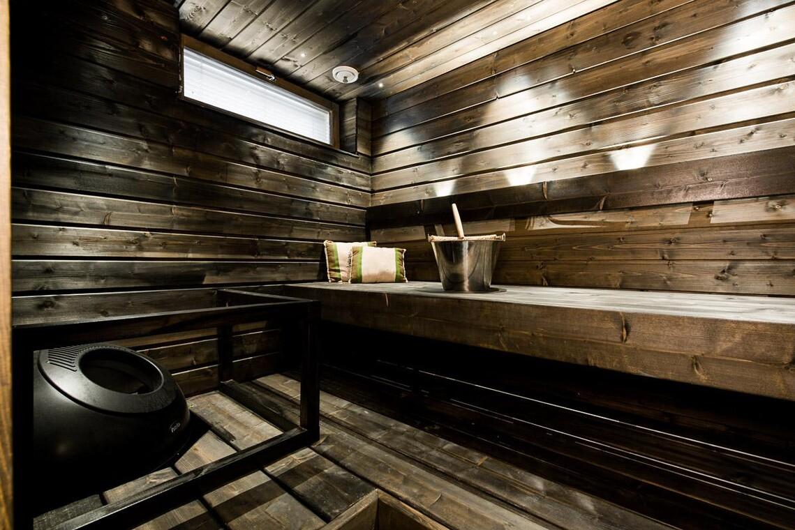 Perinteinen sauna 7674821