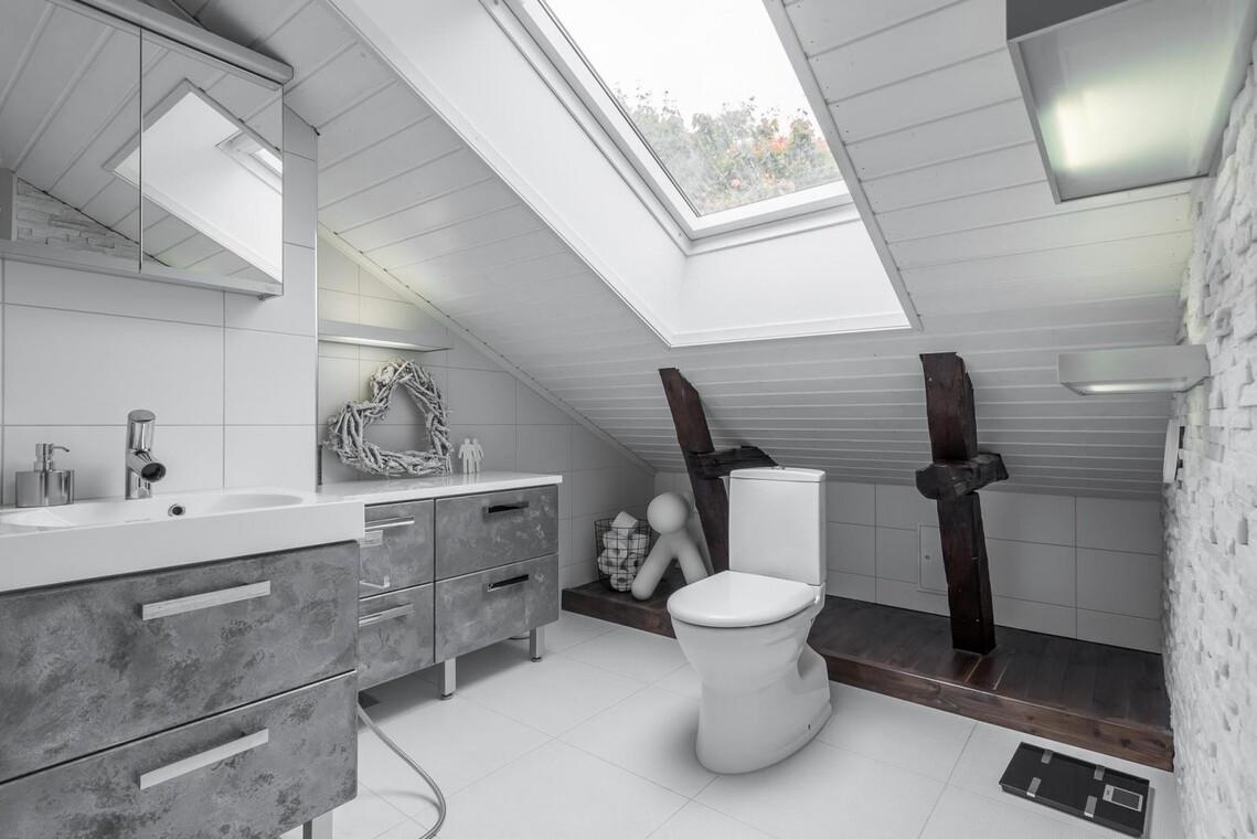 Kattoikkuna ja hienoja pintoja wc:ssä