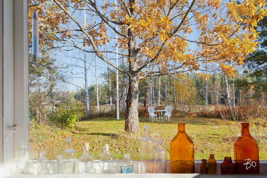 Keittiön ikkunasta näkyy idyllinen maalaismaisema