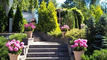 Vehreä piha ja puutarha sisääntulon yhteydessä