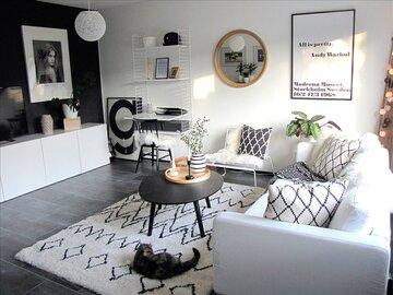 Kompaktin kodin mustavalkoinen olohuone