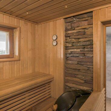 Moderni sauna 9743129